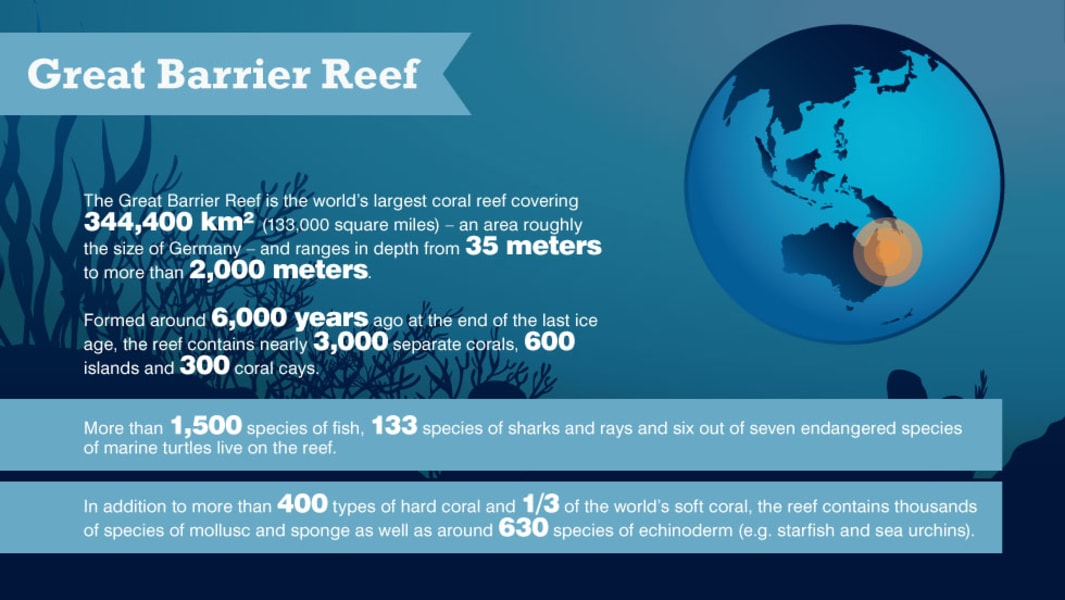 great barrier reef infographic 2