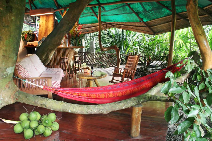 treehotel tree house lodge