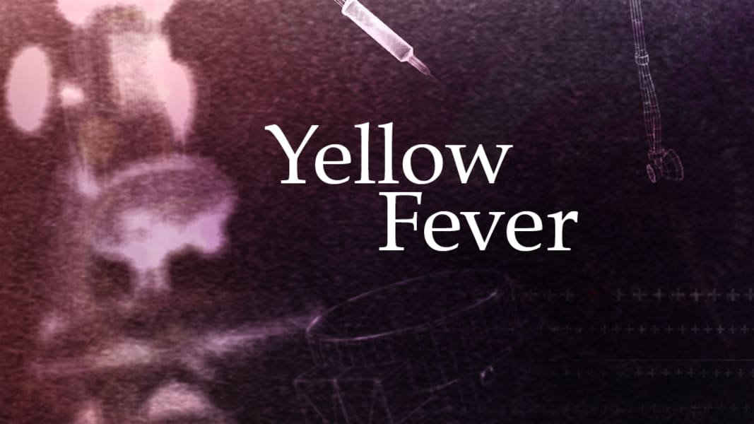 lifeswork cure Yellowfever