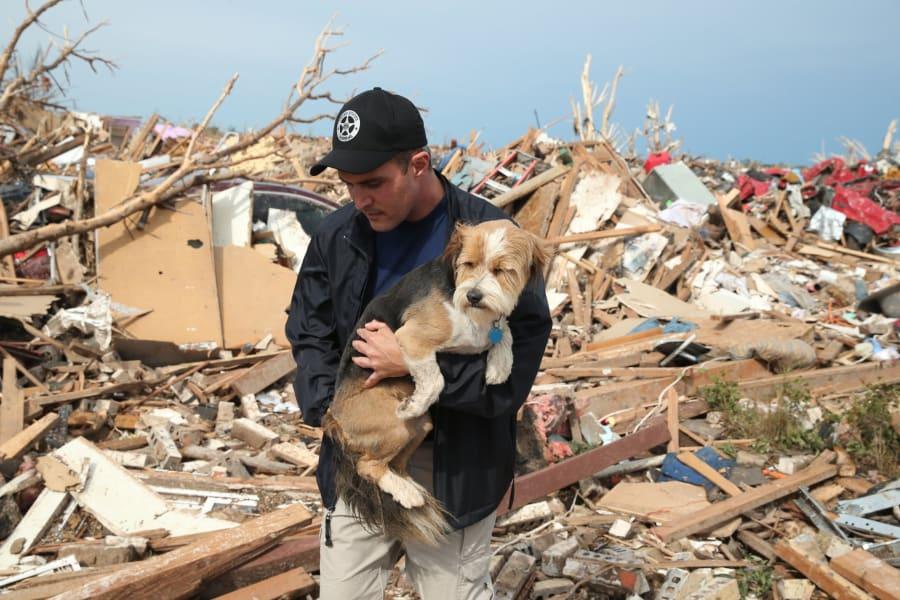 01 animals oklahoma tornado