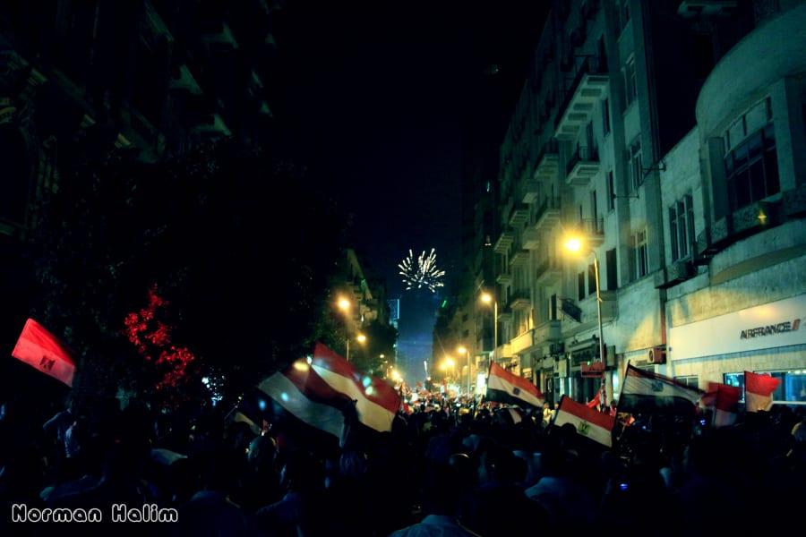IRPT protests egypt gallery halim 2