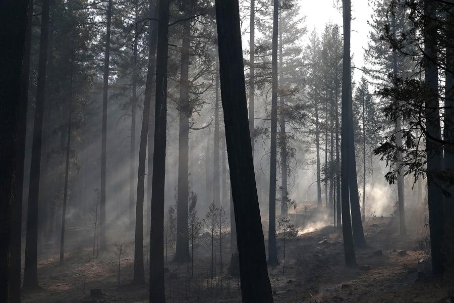 09 Yosemite Rim Fire 0823