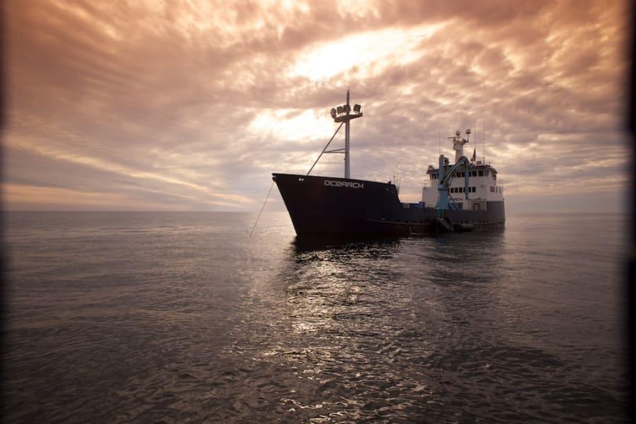 ocearch shark tagging vessel