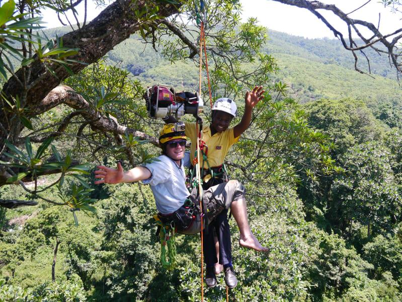 Explore Trees school children climbing