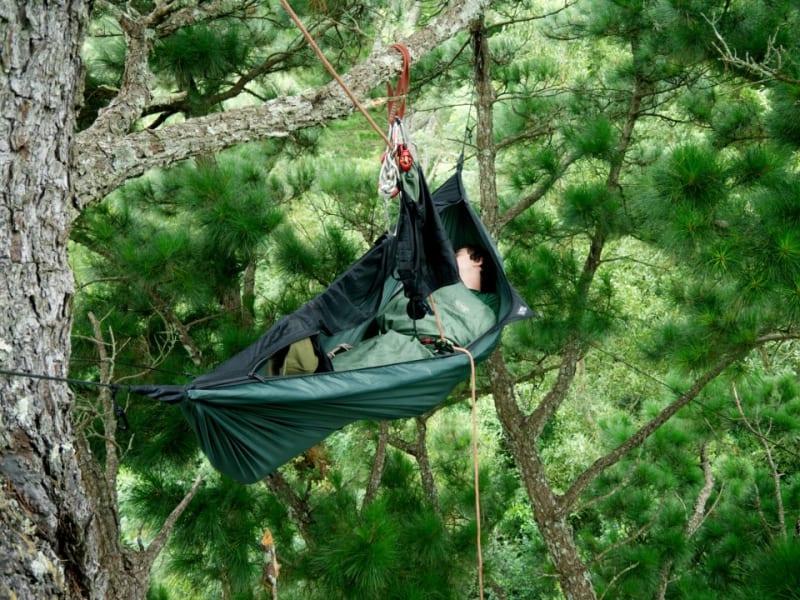 Explore Trees hammock sleep
