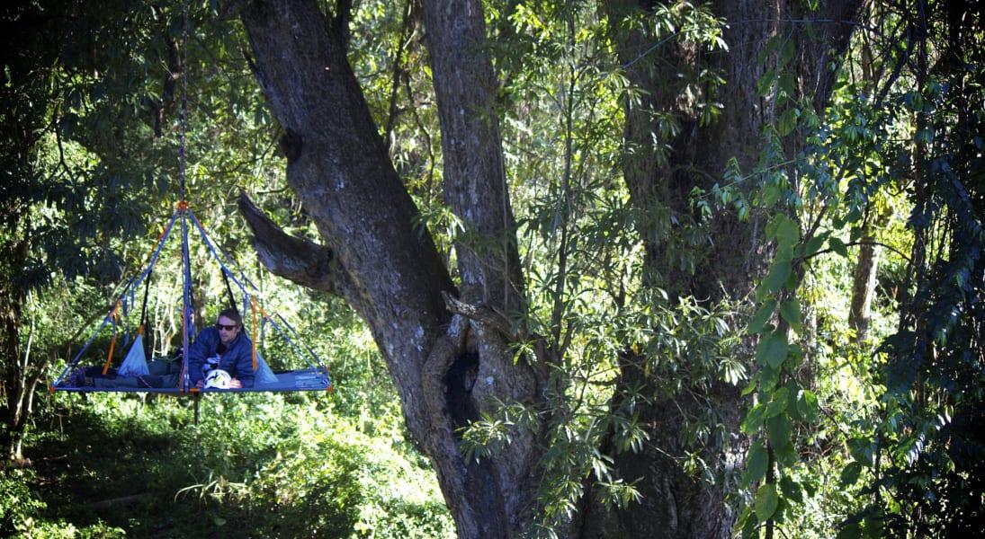 Explore Trees tent drew bristow