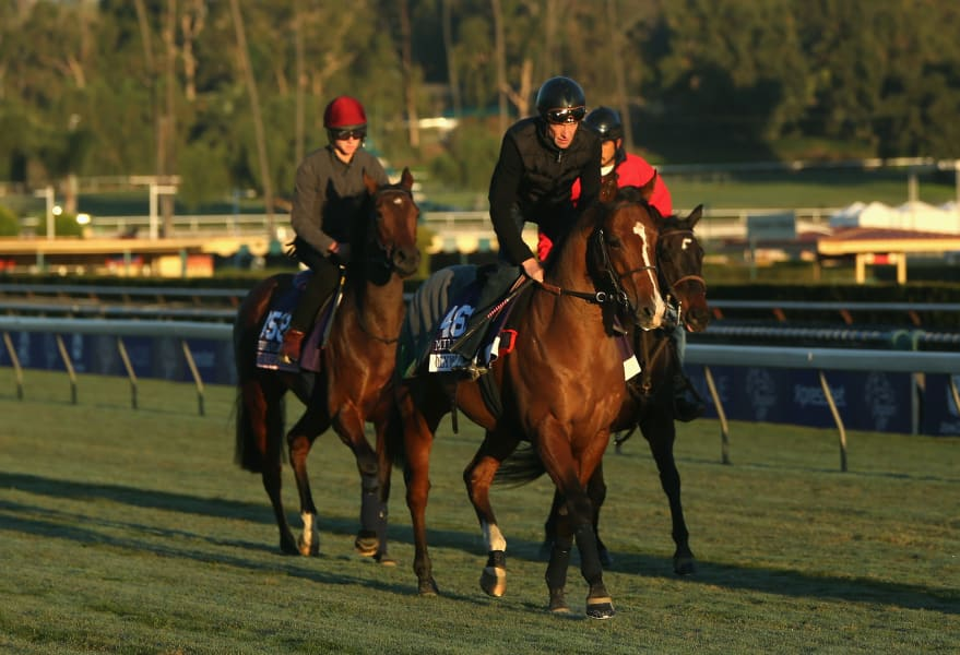olympic glory breeders' cup