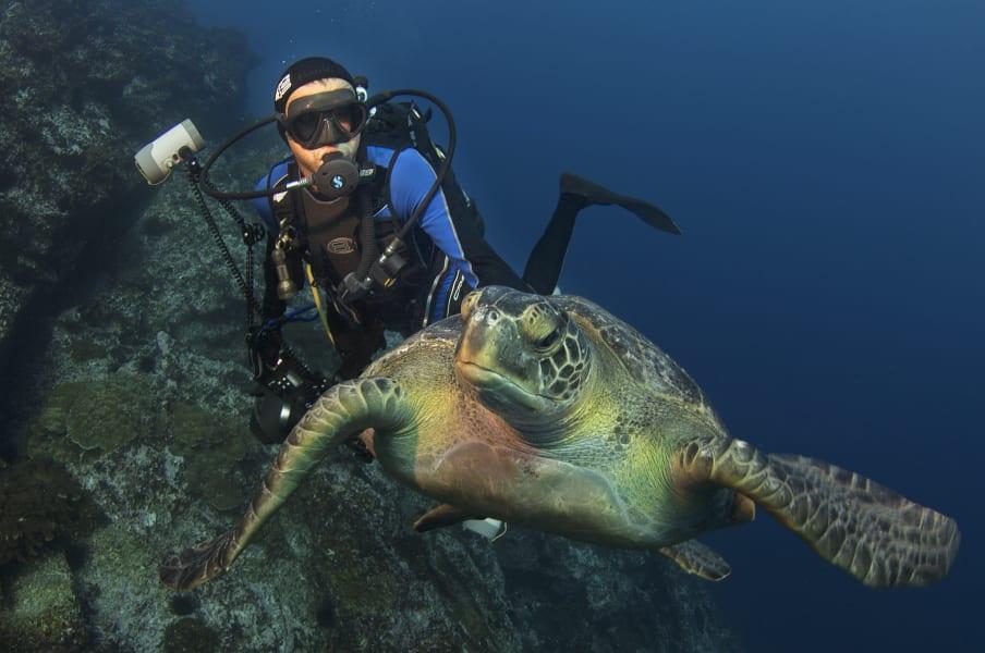 enric sala turtle