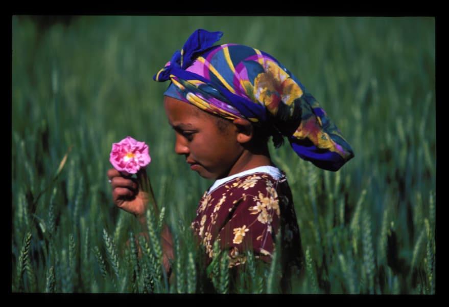 rose festival morocco 4.jpg