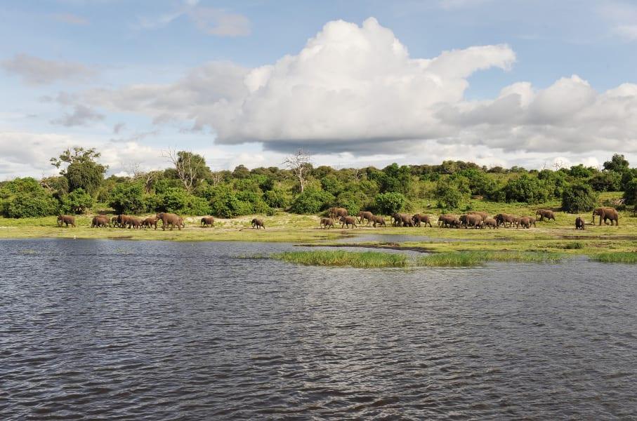 Botswana Conservation Park 10