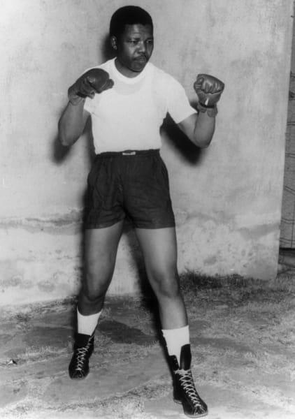 mandela boxer 1950