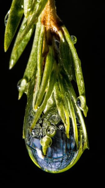 ice.droplet.irpt