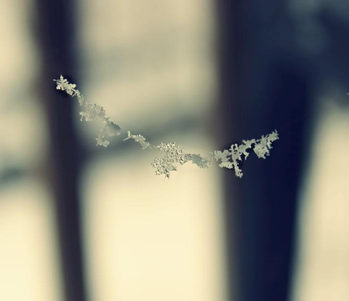 snowflake.string.irpt