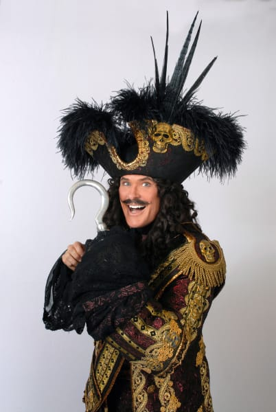 pantomime celebrity hasselhoff