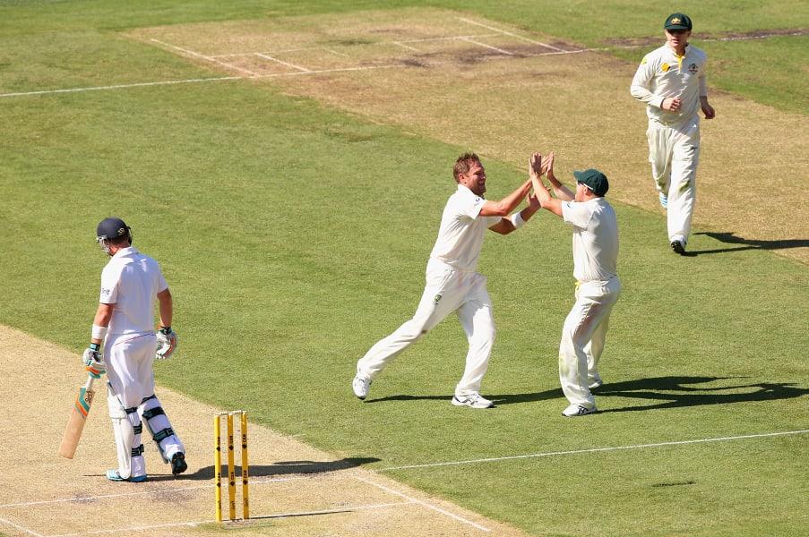 cricket gallery 4