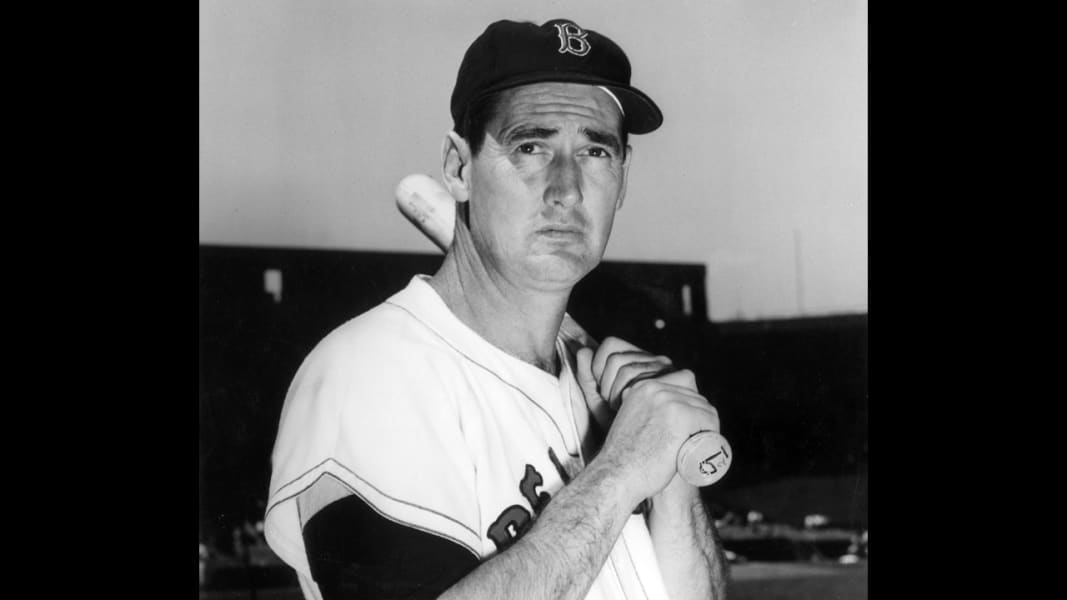 ted williams 0116