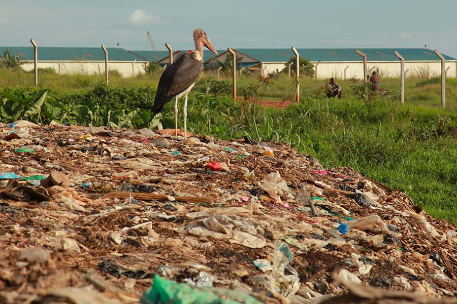 yeli paper bags plastic uganda