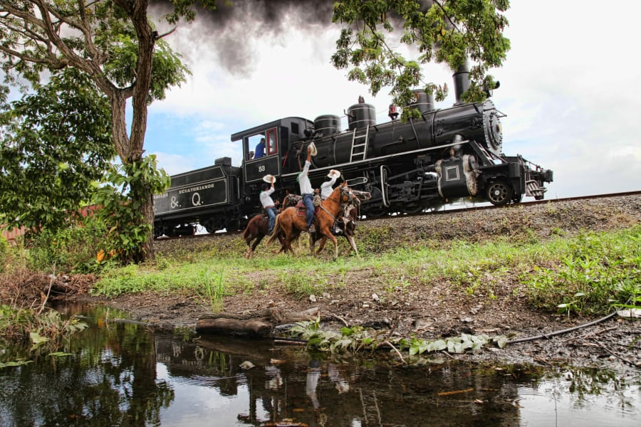 ecuador train-d
