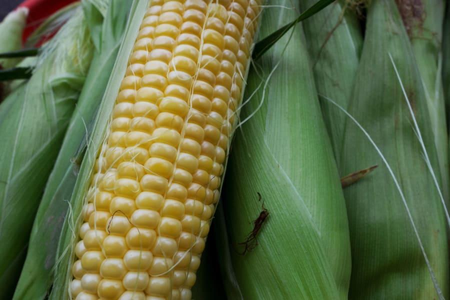 Corn sweetener