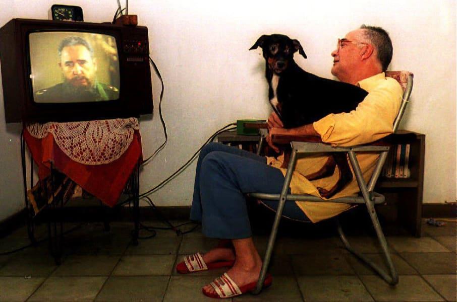 10 Dog Watch TV Castro cost