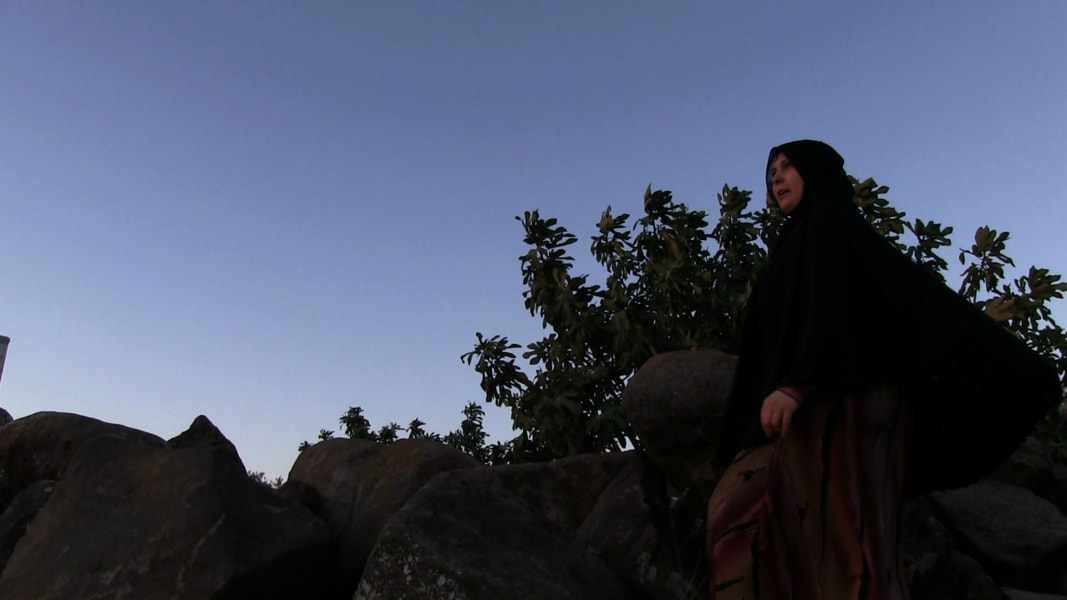 Abounaddara Syrian film collective short Lady of Syria
