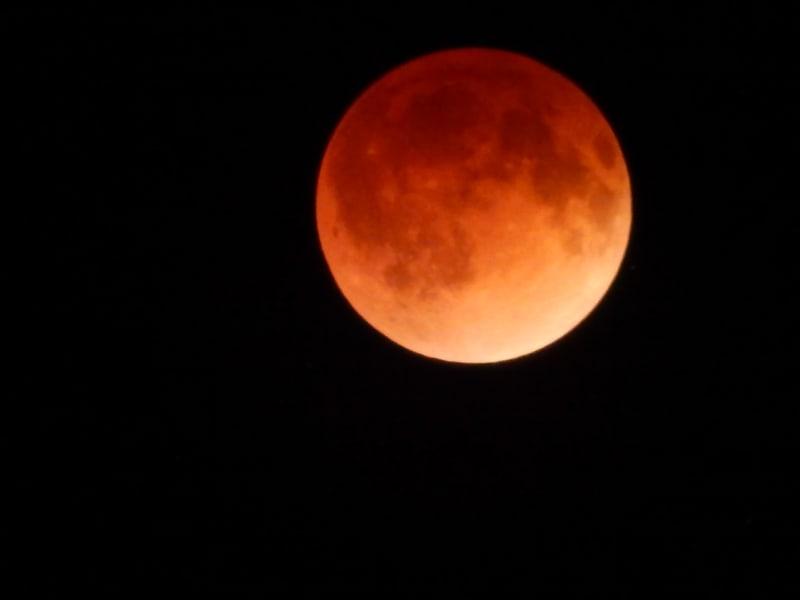 irpt.blood moon.michigan