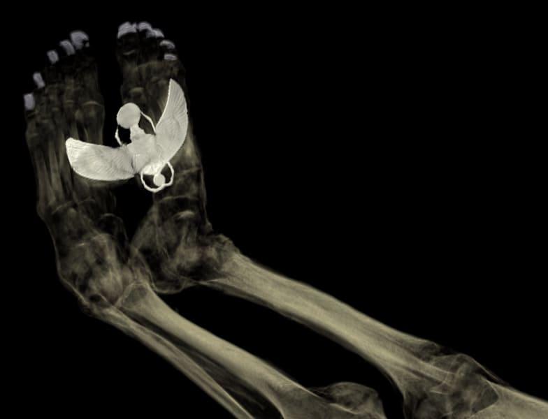 british museum ct scann mummy tamut feet