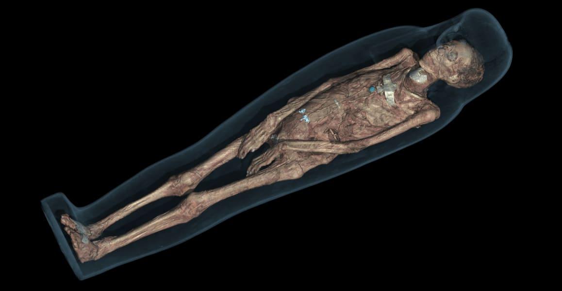 british museum ct scan mummy 3d visualizaton of Tamut body