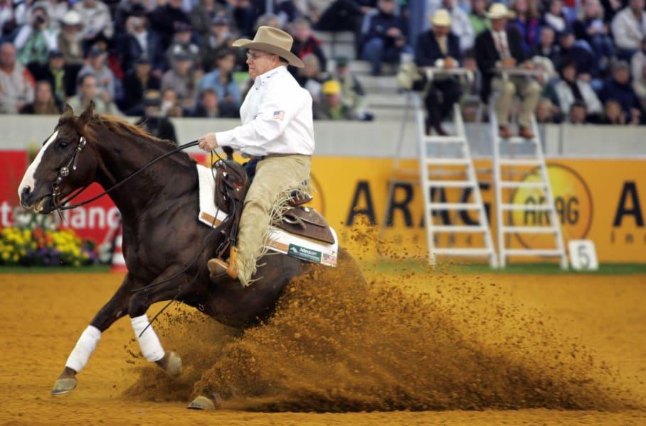 Equestrian reining