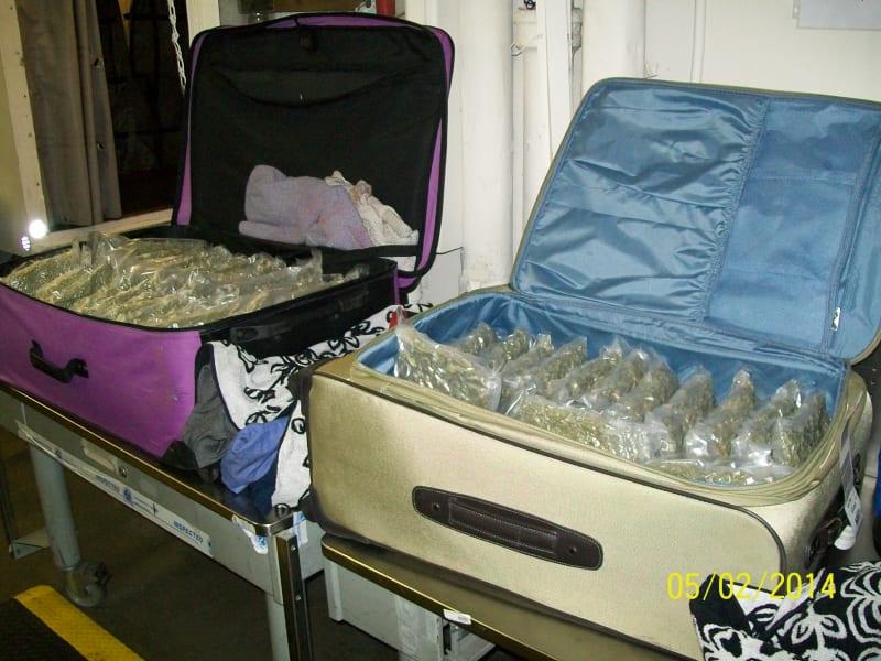 marijuana tsa suitcases
