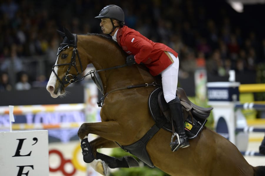 best equestrian images 4