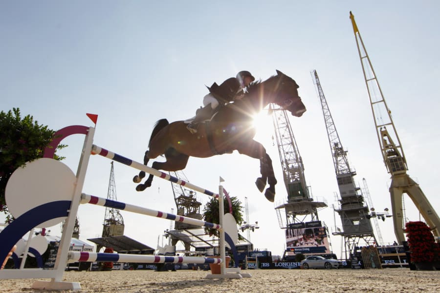 best equestrian images 6