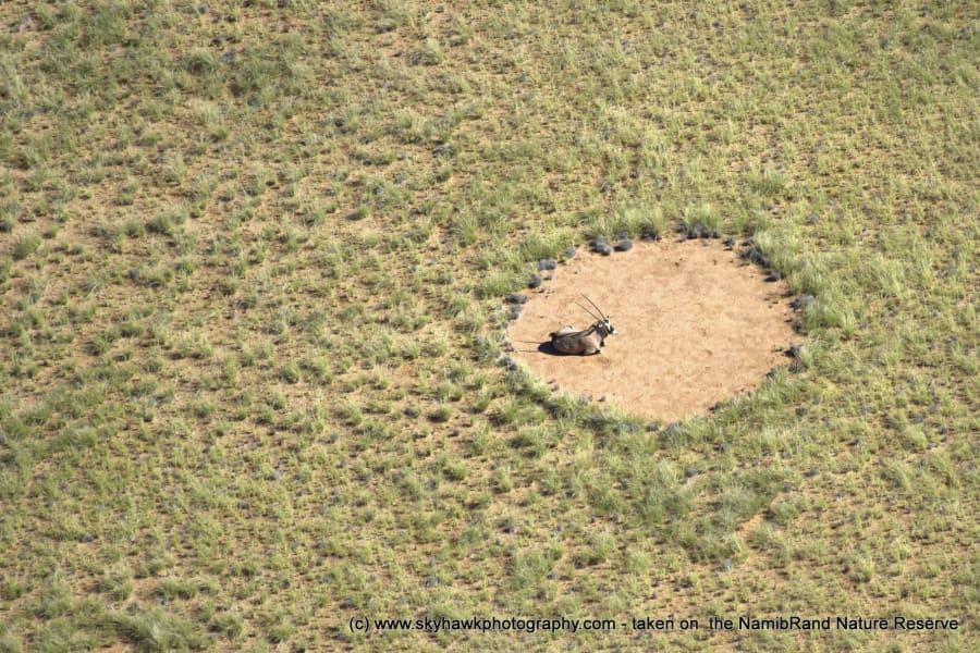 Namibia fairy circles