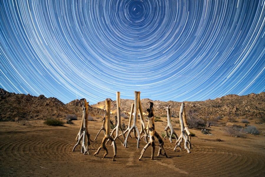 AOM stargazers irpt joshua tree national park