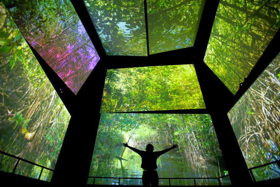 panama 4 biodiversity museum