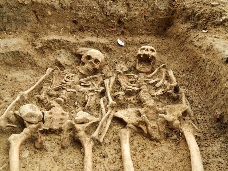 Leicester skeletons 1