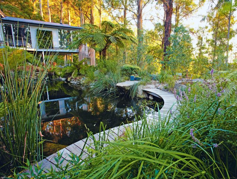 garden olinda