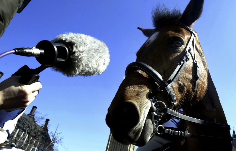 equestrian sound horse mic
