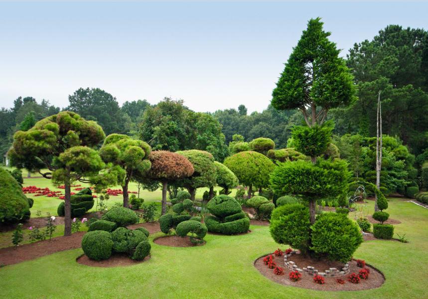 Pearl Fryer Garden Bishopville