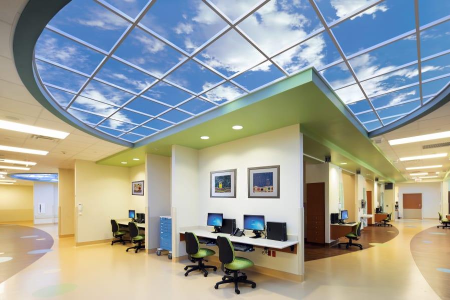 sky factory biophilic design 2