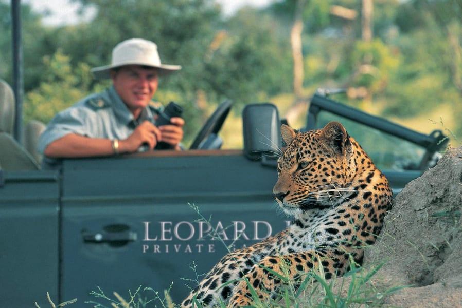 safari leopard hills