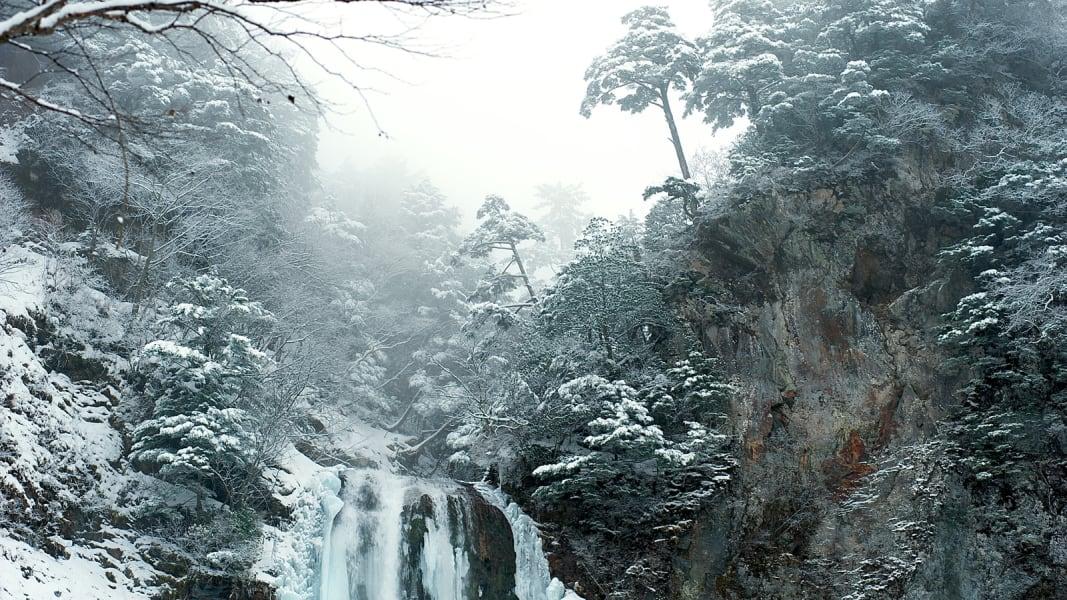 winter photo 6