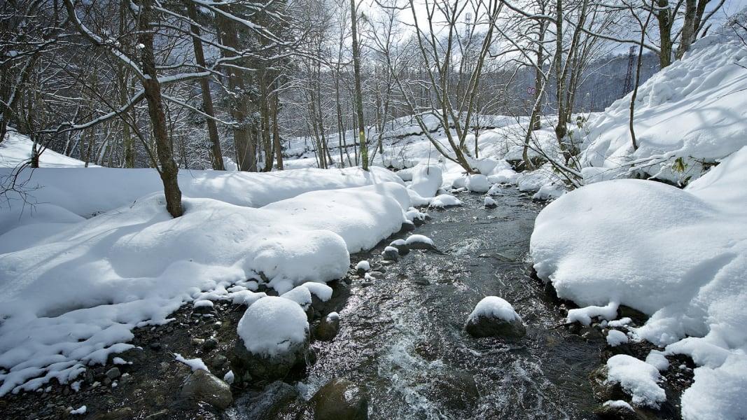 winter photo 8