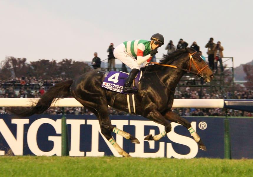 top horses 10