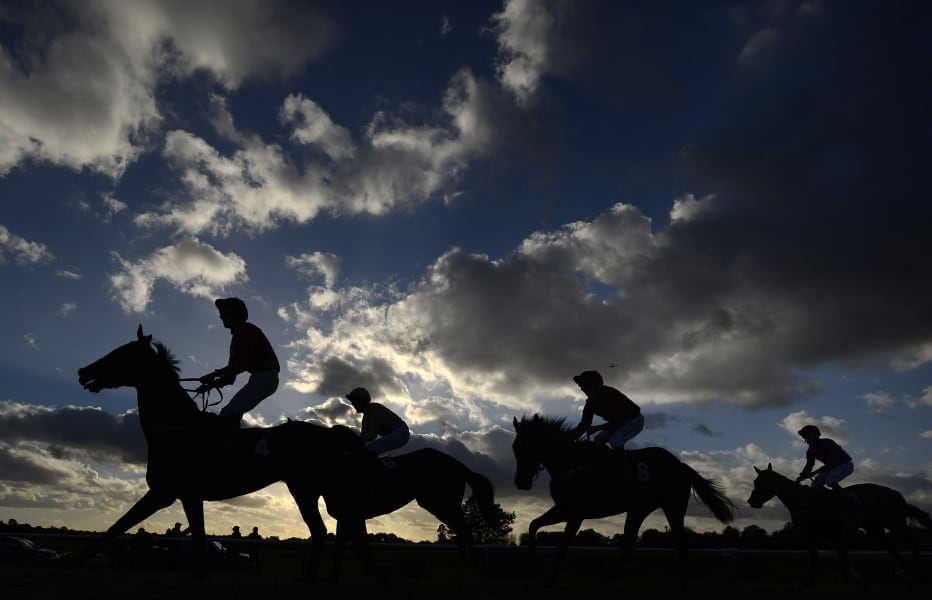 horses in shadow lingfield