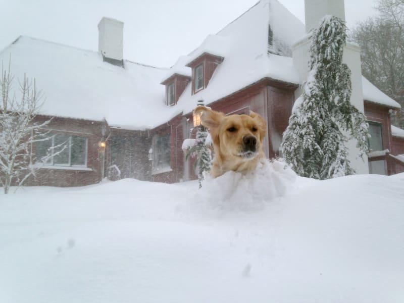 02 snow 0215