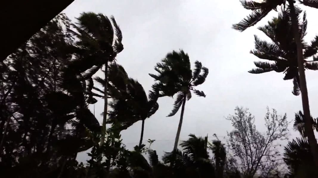 01 cyclone pam 0313