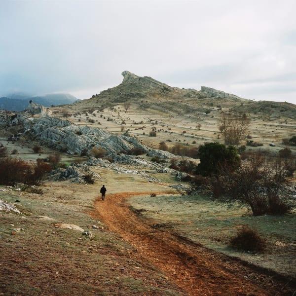 antoine bruy landscape RESTRICTED USE