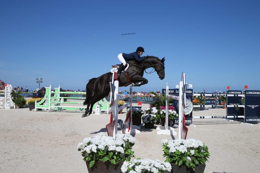 horsegrasso2