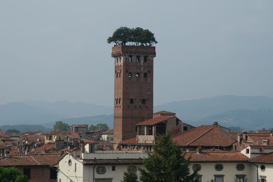 Amazing Gardens- Torre Guinigi Italy